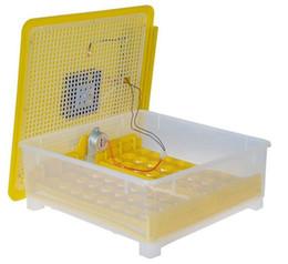 Wholesale Incubator Digital - Advanced 48 Eggs Incubator Mini Hatching Machine Full Digital Automatic Poultry Chicken Goose Duck Brooder Egg Incubators