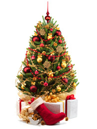 Wholesale Red Plastic Ornaments Balls - Christmas Tree Balls Ornaments Shatterproof Balls 24Pcs  Lot Trees Wedding Parties Mini Tree Decorations For Holiday With Muticolor