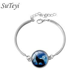 Wholesale Chain Link Images - Wolf Art Image charm bracelet Glass Cabochons Vintage silver Accessories Chain Adjustable Charm Bracelets For Women