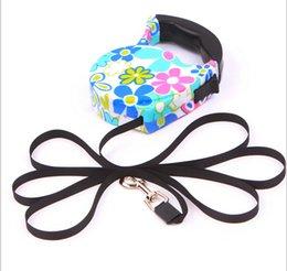 Wholesale Retractable Belt Dog Leash - Pet Retractable Dog Leash Flexible Leash Puppy Dog Cat Automatic Lead Telescopic belt 5M