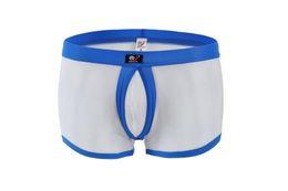 Wholesale Men S Gauze Panties - WJ underwear men sexy gay male panties bugle pouch gauze boxers Mesh penis sheath see through transparent men's boxer 1003-PJ