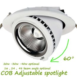Wholesale Wholesale Cold Cuts - Cut Hole 160-170mm Beam Angle 16 24 48 Adjustable LED 20W(2000lm) 30W(3000lm) 40W(4000lm) Fire Rated Spotlight Adjustable