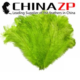Wholesale CHINAZP Factory Cheap cm inch Length Selected Top Quality Dyed Lime Green Ostrich Wing Feathers