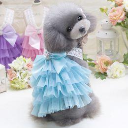 Wholesale Braces Wedding Dress - Elegant Summer Pet Dog Braces Skirt with Bowknot Small Medium Dogs Layer Dress Purple Color Free Shipping