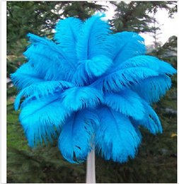 ostrich feathers wedding decorations NZ - Ostrich Feathers Plume Centerpiece for Wedding Party Table Decoration natural sky blue Ostrich Feathers (Many Sizes for You To Choose)