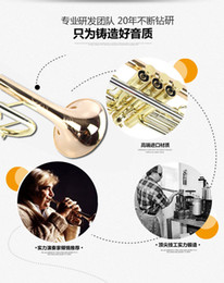 Wholesale B Flat Trumpet - 20 17 New Top Trumpet TR-305G B flat phosphor bronze trumpet musical instrument trumpet music performances