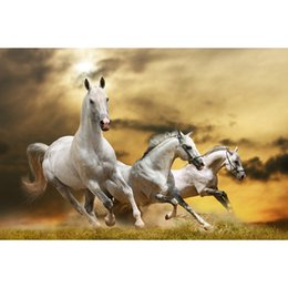 Wholesale Black Paint Horses - White Horse DIY 5D Diamond Painting Diamond Mosaic Full Square Cross Stitch Embroidery Home Decor Handmade Needlework Gifts
