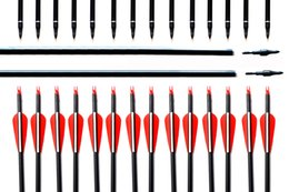 Wholesale Field Tip Arrows - Plastic Vanes Carbon 30-Inch Arrows with Field Points Replaceable Tips for Recurve Bow and Compound Bow
