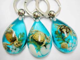 2019 llavero natural Envío gratis 17 unids YQTDMY insecto color azul estilo de la joyería de moda cangrejo natural llavero llavero natural baratos