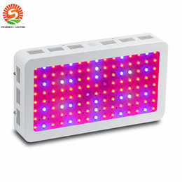 Wholesale Led Garden Flower Lights - Full Spectrum 1000w 1200W 1600W 2000W LED Grow Light Double Chip Led Plant Lamp Indoor greenhouse growing garden flowering hydroponic lights