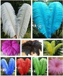 Wholesale 16 Inch Feathers - Wholesale 10 pcs High quality beautiful ostrich feather 40-45cm 16-18 inches U pick Color Wedding centerpiece decor TNM-0009