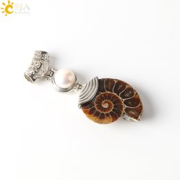 fossil chain Coupons - CSJA Pearl Charms Natural Ammonite Shell Fossils Reliquiae Animal Single Gemstone Bead Conch Carved Jewelry Buckle Necklace Pendants E256 A