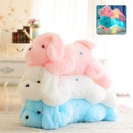 Wholesale Ce Dog - kawaii 45CM Night Light LED Lovely Dog Plush Toys Animal Pillow Bolster for Kids and Friends