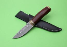 Comprar cuchillos online-Envío gratuito para un alto rendimiento en costos Damasco - Cuchillo recto Cuchillo guerrero de alta calidad, bienvenido a comprar