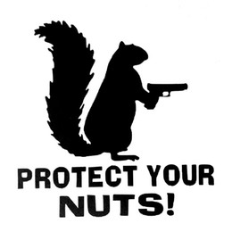 Wholesale Marines Stickers - Protect Your Nuts Squirrel Police Army Navy Marines Car Stickers and Decals Creative Sticker Motorcycle Exterior Accessories JDM