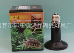 Wholesale Wholesale Box Turtles - Household Holding Lamp Crawler Pet Reptile Amphibian Poultry Heating Light Far Infrared Bulb Ceramics Lamps With Color Box 8 5jr H