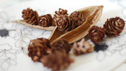 Wholesale Christmas Pine Decoration - 100pcs lot Mini Small Natural Pine Cones Dried Flowers for Christmas Decoration or Crafting Floral Supplies Free Shipping