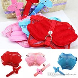 Wholesale New Cat Leash Harness - Wholesale New Hot Pet Dog Cat Adjustable Angel Wing Safety Harness Lead Leash Pink Blue 3 Size