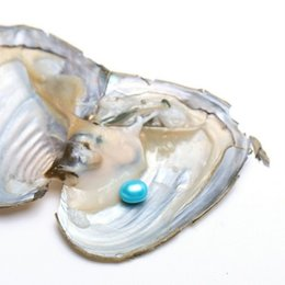 Wholesale Heart Shaped Holiday Lights - Materials for Jewelry Making Zhuji Single Pearl Freshwater Oysters Light Blue Grade AAA 7-8 mm Rice Shape