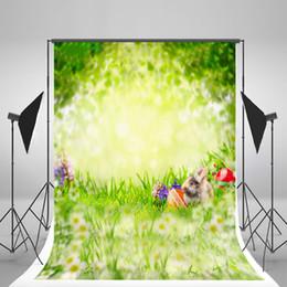 Argentina Kate Spring Fotografía Telón de fondo Arrugas Material libre Fondo Huevos de Pascua Foto Telón de fondo Lindo conejito para niños Fotografía Suministro