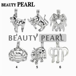 Wholesale Gifts Sign - 12 Pieces Wholesale Jewellery Mix Lots 18KGP Love Pearl Cage Pendant Zodiac Sign Wish Cages Lockets