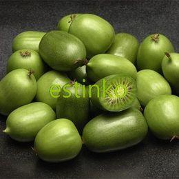 100 шт. / лот мини киви фрукты семена киви Актинидия Arguta Тара виноград семена бонсай фрукты горшечных растений DIY Главная сад от