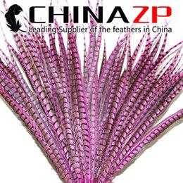 Wholesale pink select - CHINAZP Factory 50pcs lot 70~80cm(28~32inch) Length Selected Prime Quality Dyed Pink Lady Amherst Pheasant Tail Feathers