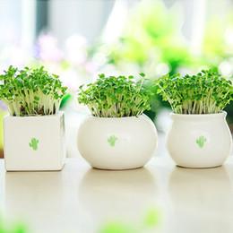Wholesale Grass Pots - Mini Ceramic Flower Pot Creative Green Grass Planting Flowerpot Cute Desktop Decorative Jar White