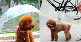 Wholesale Dog Umbrellas - Useful Transparent PE Pet Umbrella Small Dog Umbrella Rain Gear with Dog Leads Keeps Pet Dry in Rain Snowing LLFA