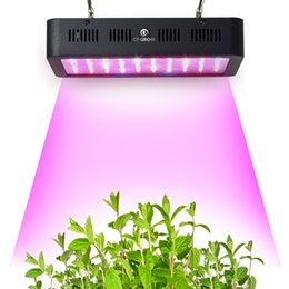 Wholesale Greenhouse Veg - Full Spectrum LED Grow Light 300W Veg Bloom Growing Lamp Indoor Hydroponic Greenhouse LED Plant All Stage Growth Lighting