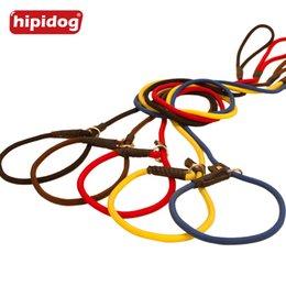 Wholesale Dog Leashes P Rope - Hipidog Nylon Rope P Chock Obedience Dog Pet Slip Training P-leash Leads for Dog Pet Training Walking Collar Lead
