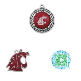 boules de laiton creuses Promotion Vente en gros-10pcs Washington State Cougars College Team émail bijoux charmes pour collier Bracelet
