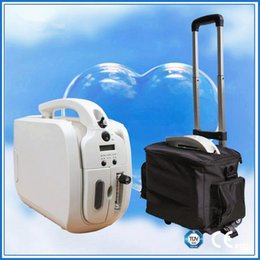 Wholesale Mini Li Battery Oxygen Concentrator V V DC12V Battery Oxygen Generator With Wheels and Bag Can be Used In The Car