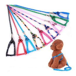 Wholesale Puppies Belt - New Nylon Pet Cat Doggie Puppy Dog Leash Leads Harness Belt Traction Rope 20pcs lot free shipping