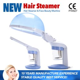 Wholesale Steamer Free Shipping - 2017 Newest 2 in 1 facial and hair steamer for home use ozone professional hair steamer CE approval DHL Free Shipping