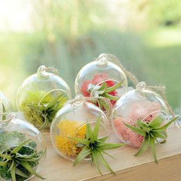 Wholesale Wholesale Glass Display - 8 cm Creative Hanging Glass Vase Succulent Air Plant Display Terrarium,Small Hanging Glass Vase Air Plant Terrarium