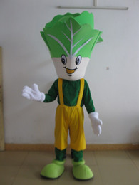 Wholesale green adult mascot costume - sm0516 100% real photos of green vegetables cabbage mascot costume for adult to wear for sale