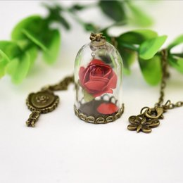 Wholesale Beauty Beast Necklace - 2017 Beauty and The Beast Enchanted Rose Inspired Pendant Belle Necklace Dry Rose Glass Dome mirror Charm bronze tone Long Necklace DR-024