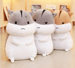 Wholesale Cute Fat Girls - Even the plush toys pillow children's day gift sprout girls cute fat hamster doll dolls summer play