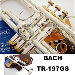 Wholesale Bach Tr - Free Shipping Bach Trumpet TR-197GS Plate silver pipe body Gold-plated Key Carved Trumpet Drop bB adjustable Trumpet instrument