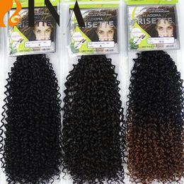 Wholesale Braided Water - BINA Curly Crochet Braids Hair 13inch Water Wave Mali Bob Crochet Braiding Hair Kinky Curl ombre color Kanekalon Braid Hair1pieces lot