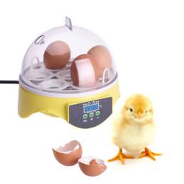 Wholesale Egg Incubator Temperature Controller - Practical Small Brooder CE 7 Eggs Auto Incubator Temperature Controller Mini Poultry Hatchery Machine for Chicken Duck Birds