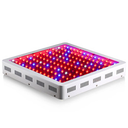 le migliori luci crescono Sconti Doppia chips 1600W Led Grow Light Best Veg-Bloom Spectrum per Hydroponics Greenhouse Plants Veg and Bloom Grow Tenda