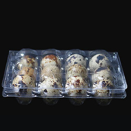 Wholesale Plastic Egg Packaging - 12 Holes Quail Egg Containers Plastic Clear Egg Boxes D28mm H39mm Package Box Holder Free Shipping ZA4002