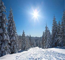 2019 neve natalizie Sunny Blue Sky Winter Fondali per la fotografia di spessore bianco coperto di neve Pini Ski Slope Christmas Holiday Kids Photo Booth sfondo sconti neve natalizie