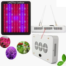 Wholesale Led Lighting Spectrum - Double Chips 1000W 1200W 1600W 2000W LED Grow Light Full Spectrum For Veg Bloom Hydroponic Planting EU AU US UK Plug