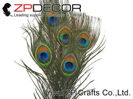 Wholesale Natural Peacock Tail Feathers - New Arrival ZPDECOR 50pcs lot 25-30cm(10-12inch) Beautiful Natural Peacock Tail Feathers For Carnival Decoration bulk sale
