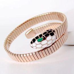 Titane acier bijoux gros commerce extérieur bracelet or 18 carats couleur exagérée tête de serpent bracelet bracelet accessoires ? partir de fabricateur