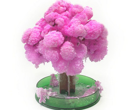 Wholesale Cherry Blossom Papers - iWish 2017 14x11cm Visual Japan Pink Big Magic Grow Paper Sakura Tree Magically Growing Trees Kit Desktop Cherry Blossom Christmas Kids Toys
