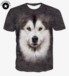 Wholesale T Shirt Plus Size Tiger - Wholesale- New Women Men 3d T Shirts Joker Wolf Cat Panda Animal Leopard Tiger 3D T Shirt Plus Size Cartoon Top Shirts